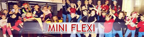 Mini Flexi